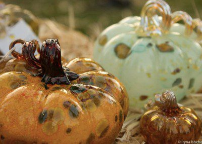 Magical glass pumpkin patch